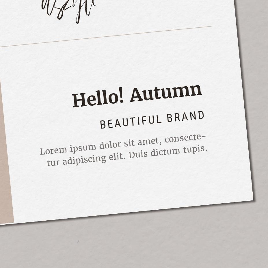 Hello! Autumn - typografia dla marki, zestaw fontów marki, czcionki nastronę | Gotowa identyfikacja wizualna dla marki jesiennej, osobowość jesienna | Hello! Beautiful brand | Sklep Moyemu
